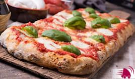 1/2m margherita pizza 73