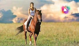 Passeggiata cavallo x2 ⭐