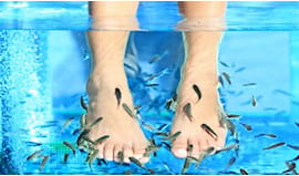 3 fish pedicure