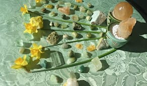 Trattamento floriterapia