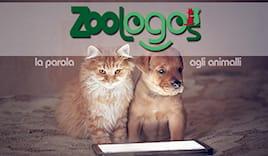 Zoologos shopping card