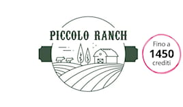 Piccolo ranch shop card