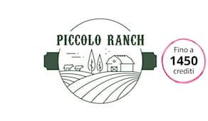 Piccolo ranch shop card