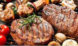 Grigliatona di carne x2
