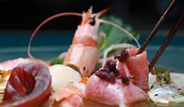 Sushi nolimits niwa x2