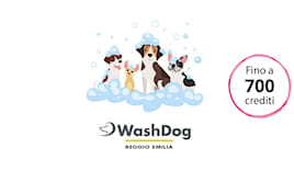 Washdog shopping card