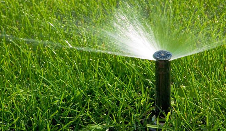 -20-su-irrigazione_166323