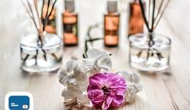 Consul aromatica regalo