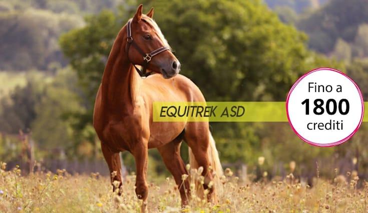 Equitrek-shopping-card_168697