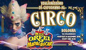 Capodanno al circo