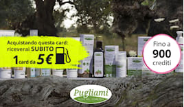 Pugliami shopping card