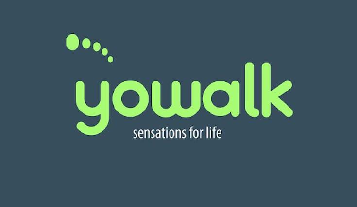 Yowalk-shopping-card_170534