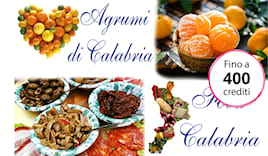 Food calabria shop card