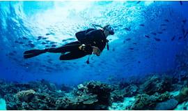 Prova scuba diving