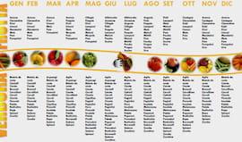 Dieta personal online