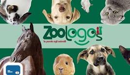 Zoologos card