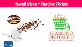 Combo giardino + hawaii