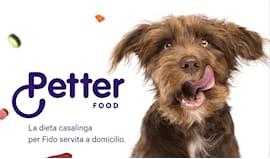 Petter food card