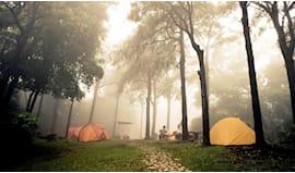 Notte in tenda nel bosco