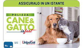 Unipolsai cane&gatto card