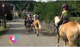 Cavallo bambini ⭐