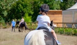 Cavallo bambini