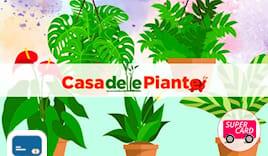 Casa piante supercard