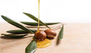 Latta olio evo italia
