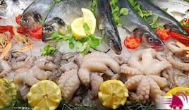 Seppie gamberi calamaro