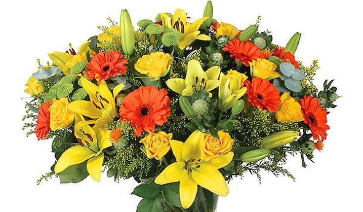 offerta di mazzo di fiori 29 a bologna spiiky