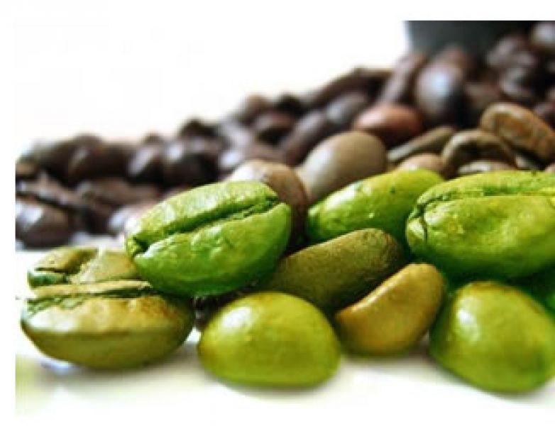 integratore a base di erbe di caffè verde