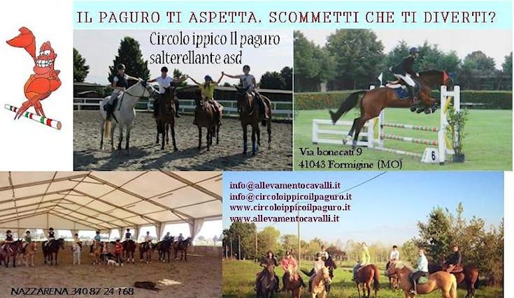 5-lezioni-equitazione_77521