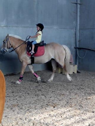 5-lezioni-equitazione_77522