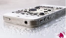 Telefono caduto in acqua?