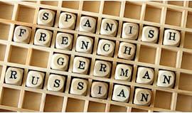 30 lezioni di lingua