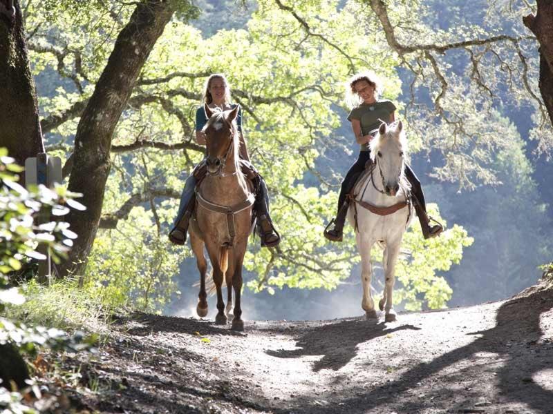 passeggiata a cavallo con istruttore di un'ora per 2 persone a contatto con la natura