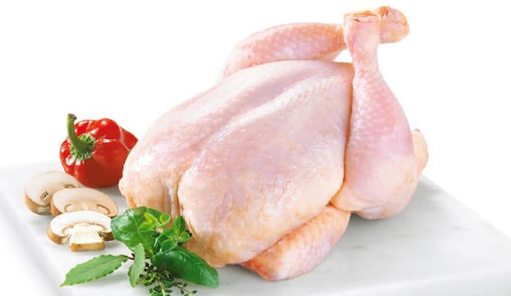 Pollo-allevato-a-terra_89238