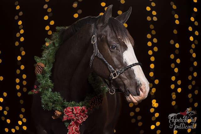 3-equitazione-per-tutti_144484