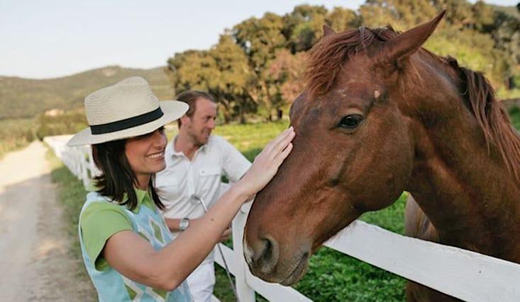 Cavallo-x2-omaggio_106881