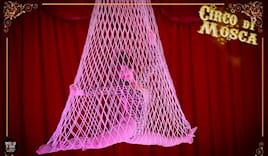 Poltrona circo orfei x3