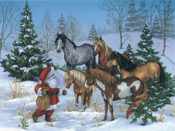 Passeggiata-a-cavallo-x2_118995