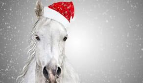 Natale a cavallo