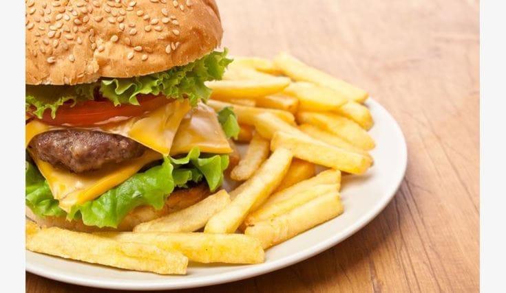 Menu-hamburger-bullbush_126869