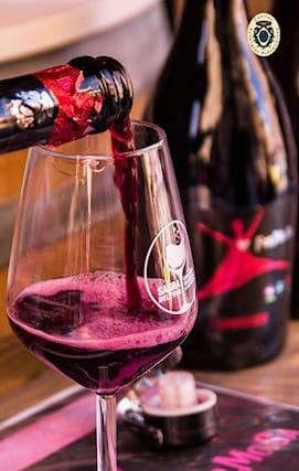 Vini-formosa-4-bott_127053