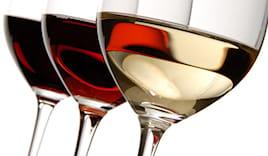 8l di vino alla spina