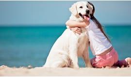 Vacanze con il tuo cane