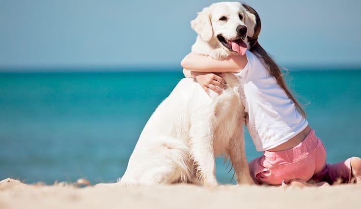 Vacanze-con-il-tuo-cane_131802