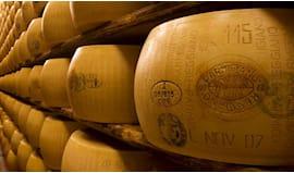Parmigiano 24mesi omaggio