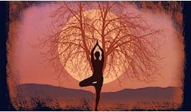 5/10 lezioni yoga hridaya