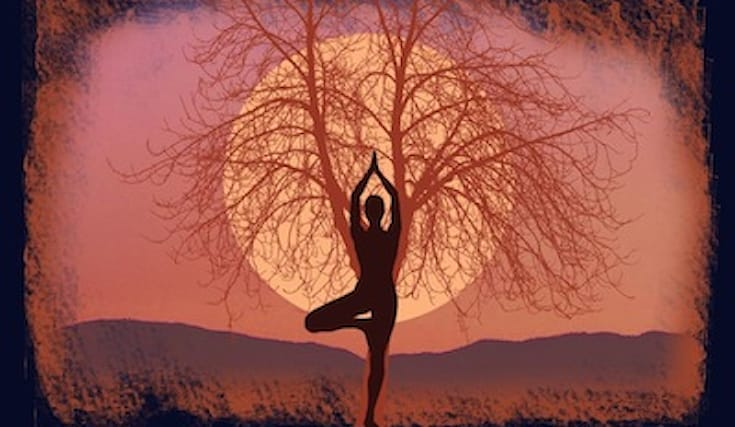 510-lezioni-yoga-hridaya_135392